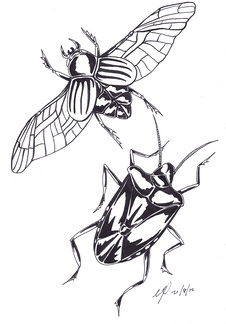 beetle monster ink