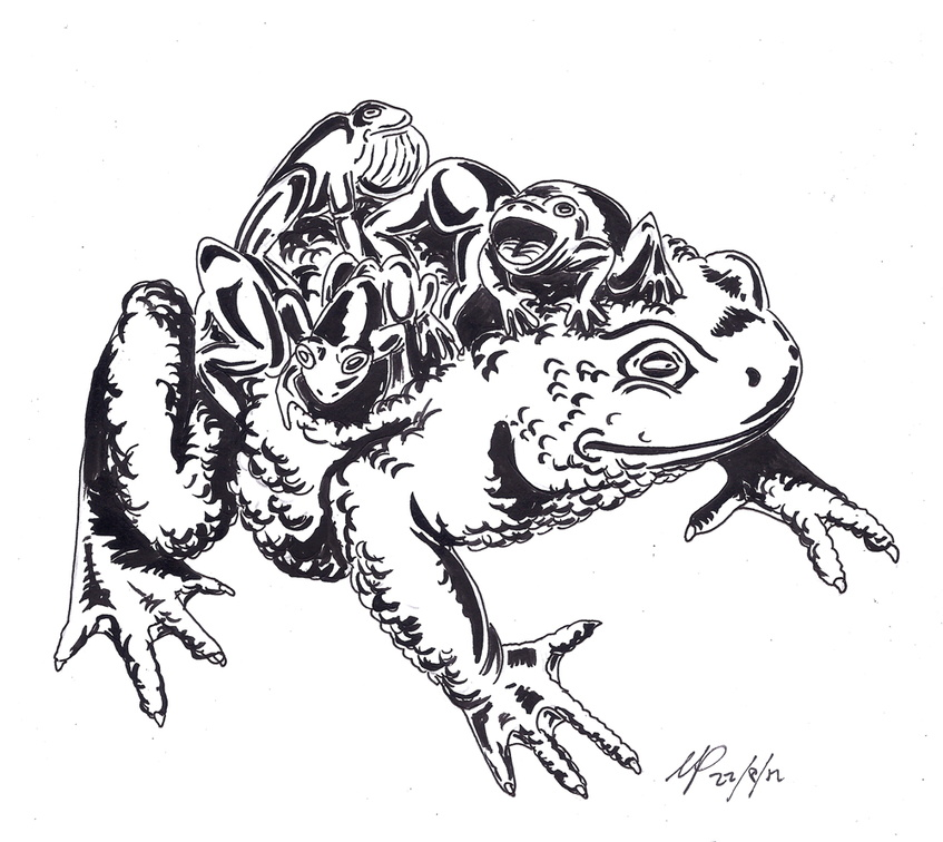 Cargo toad ink
